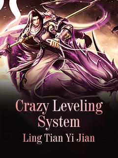 Crazy Leveling System
